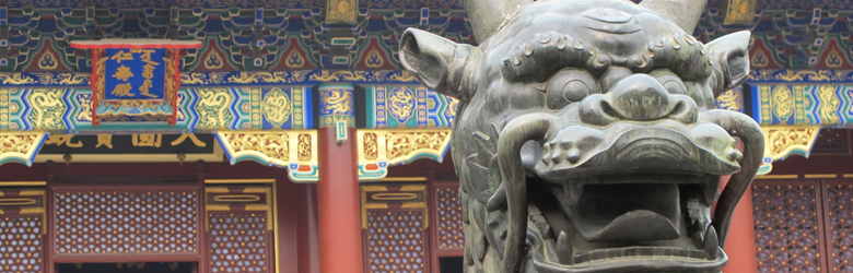 Hu Dragon Statue China
